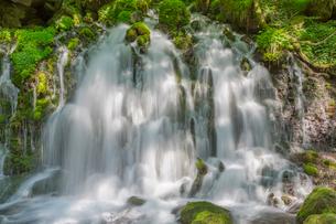 元滝の写真素材 [FYI01657566]