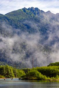 朝霧湧く新緑の上高地大正池の写真素材 [FYI01657585]