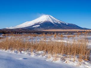 富士山 冬の山中湖畔の写真素材 [FYI01657607]