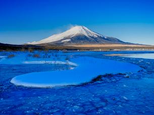 富士山 山中湖畔冬景色の写真素材 [FYI01657637]