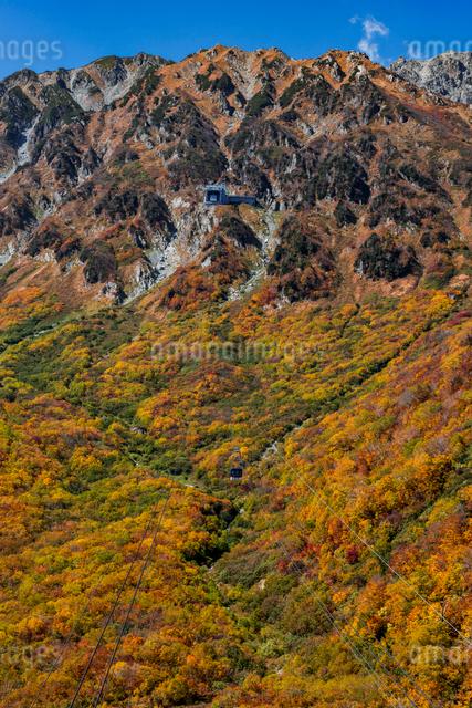 立山ロープウェイ  立山黒部アルペンルート黒部平の写真素材 [FYI01657699]