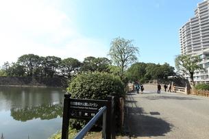 皇居和田倉橋の写真素材 [FYI01657718]