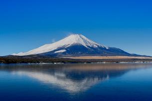 富士山 山中湖畔冬の朝の写真素材 [FYI01657748]