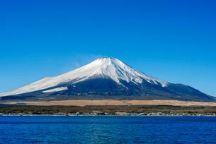 富士山 山中湖畔冬の朝の写真素材 [FYI01657872]