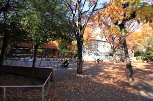 恵比寿公園の写真素材 [FYI01657925]