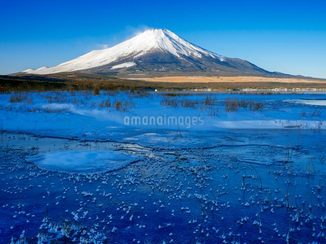富士山 山中湖畔冬景色の写真素材 [FYI01657975]