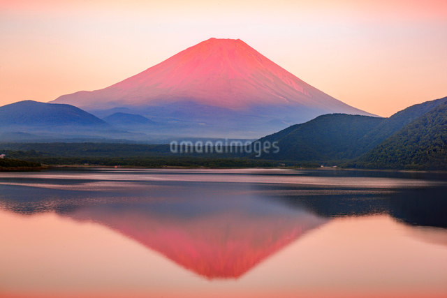 赤富士 本栖湖と富士山の写真素材 [FYI01658059]