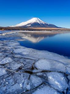 富士山 山中湖畔冬の朝の写真素材 [FYI01658105]