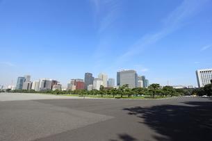 皇居前広場の写真素材 [FYI01658148]