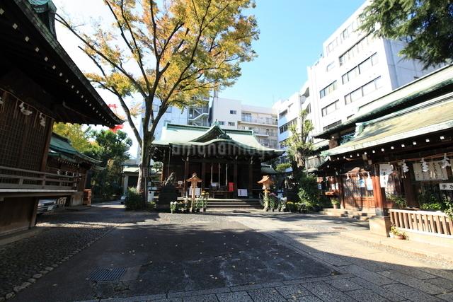 鉄砲洲稲荷神社の写真素材 [FYI01658647]