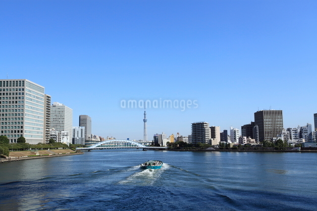 中央大橋から見たスカイツリーの写真素材 [FYI01658648]