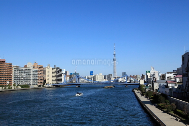 隅田川大橋から見たスカイツリーの写真素材 [FYI01658674]