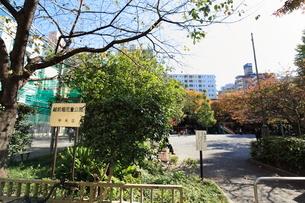 越前堀児童公園の写真素材 [FYI01658700]