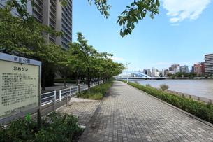 新川公園の写真素材 [FYI01658702]