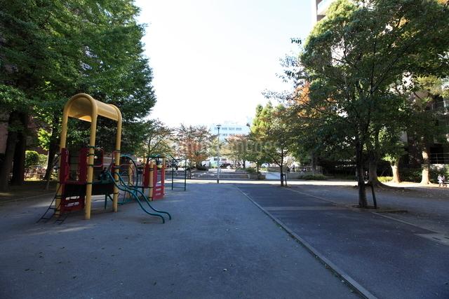 桜川公園の写真素材 [FYI01658707]