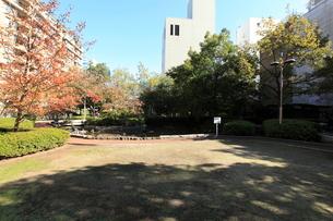 桜川屋上公園の写真素材 [FYI01659049]