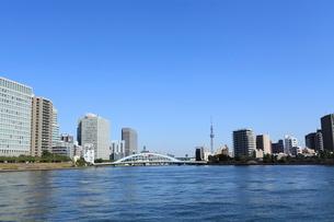 石川島公園から見たスカイツリーの写真素材 [FYI01659070]