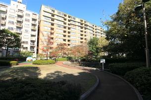 桜川屋上公園の写真素材 [FYI01659132]