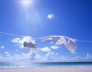 風になびくTシャツとスニーカーの写真素材 [FYI01659251]