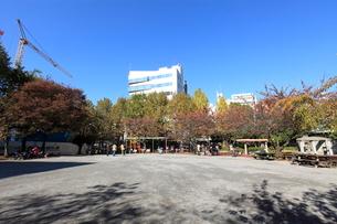 鉄砲洲児童公園の写真素材 [FYI01659284]