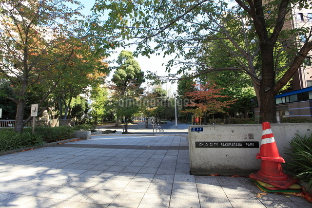 桜川公園の写真素材 [FYI01659327]