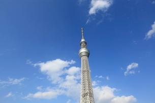 東京スカイツリーの写真素材 [FYI01659339]