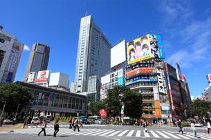 渋谷駅前の写真素材 [FYI01659412]