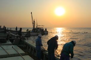 早朝の定置網漁の写真素材 [FYI01659482]