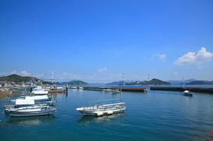 瀬戸内海の漁港としまなみ海道の写真素材 [FYI01659665]