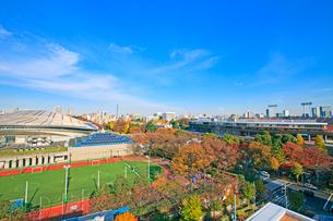 東京体育館と国立競技場の写真素材 [FYI01659799]