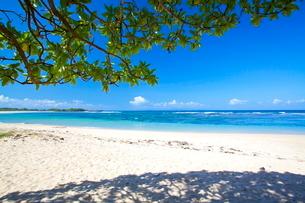 インドネシア バリ島 ヌサドゥアビーチの写真素材 [FYI01660045]
