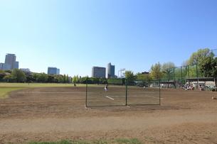 明治神宮外苑軟式野球場の写真素材 [FYI01660235]