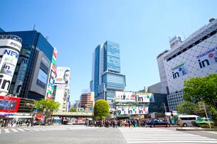 渋谷駅前の写真素材 [FYI01660241]
