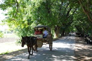 インワの馬車の写真素材 [FYI01660242]