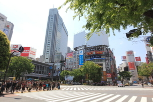 渋谷駅前の写真素材 [FYI01660415]