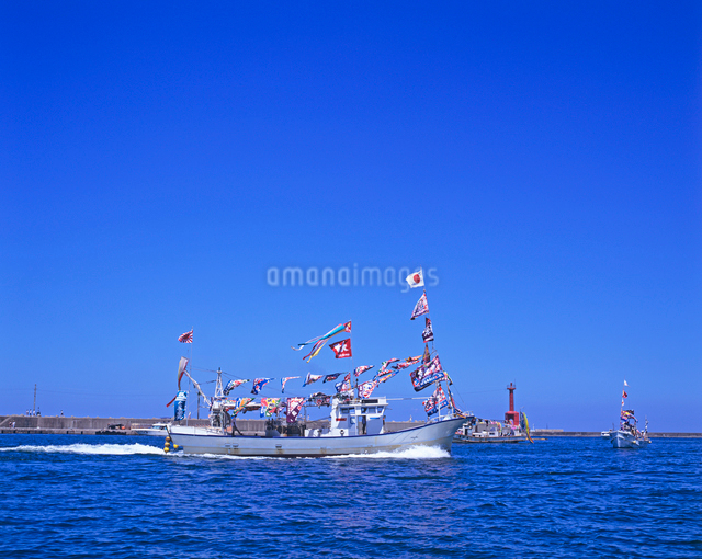 大漁旗をあげた漁船の写真素材 [FYI01660513]