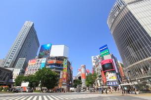 渋谷駅前の写真素材 [FYI01660560]