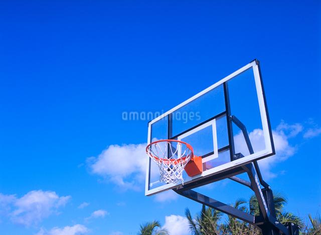 青空とバスケットボールのゴールの写真素材 [FYI01660562]