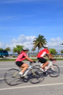 自転車の写真素材 [FYI01660689]