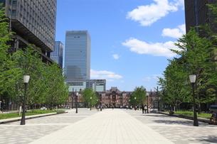 東京駅前行幸通りの写真素材 [FYI01660724]