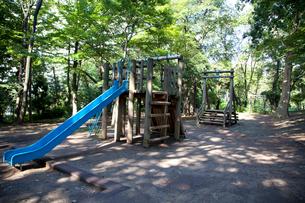 林試の森公園の写真素材 [FYI01660749]