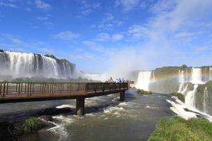 イグアスの滝の写真素材 [FYI01660955]
