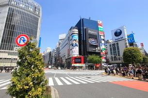 渋谷駅前の写真素材 [FYI01661256]