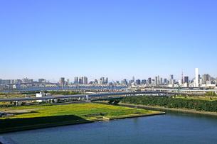 東京オリンピック施設建設予定地の写真素材 [FYI01661281]