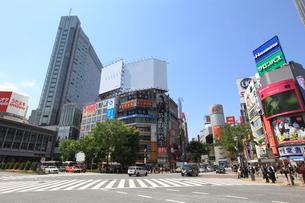 渋谷駅前の写真素材 [FYI01661331]