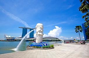シンガポール マーライオンの写真素材 [FYI01661427]