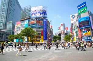 渋谷駅前の写真素材 [FYI01661628]