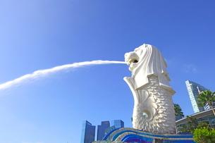 シンガポール マーライオン公園の写真素材 [FYI01661923]