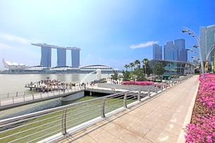 シンガポール マーライオン公園の写真素材 [FYI01661939]