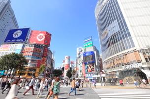 渋谷駅前の写真素材 [FYI01661948]